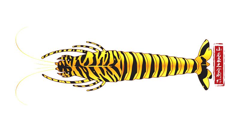 小龙鱼黑虎虾包装形象设计(良之隆产品)